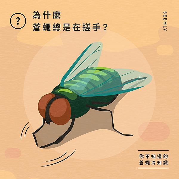 蒼蠅搓手.jpg