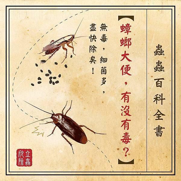蟑螂大便有沒有毒.jpg