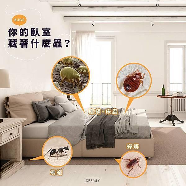 床蟲.jpg