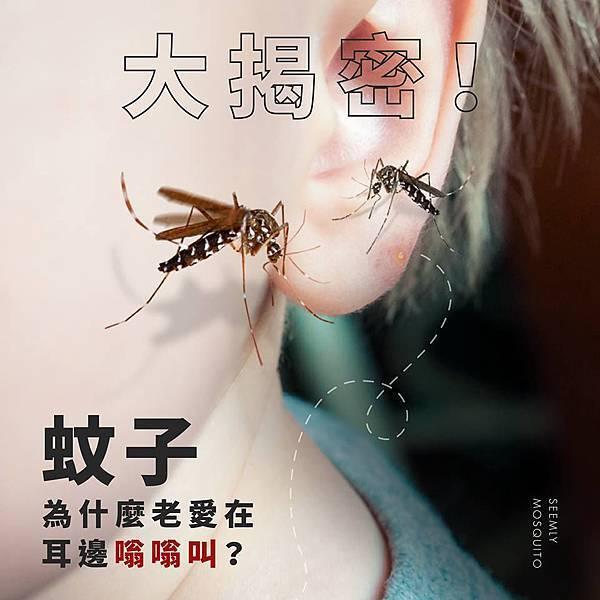 蚊子嗡嗡叫.jpg