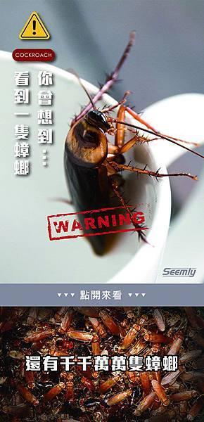 蟑螂繁殖力強.jpg