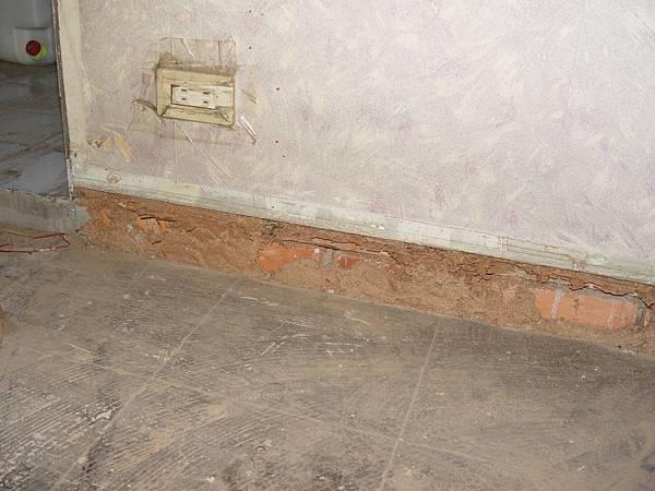 架高地板被白蟻侵蝕損壞,拆除後露出的白蟻路徑 (2).JPG