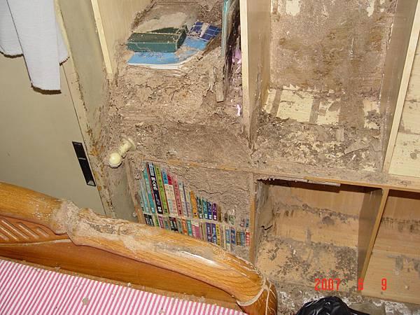 白蟻在書架上築巢,連書都被蟻巢包覆著.JPG