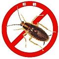 消滅德國蟑螂