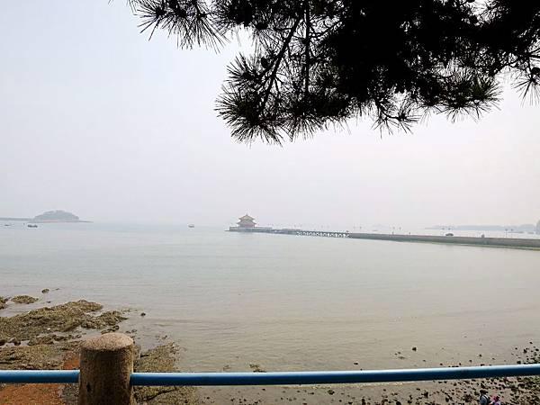 圖1 青島靠海吃海