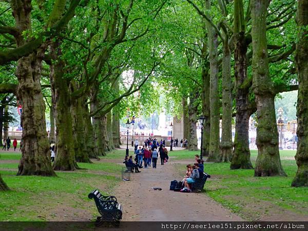 圖1 倫敦白金漢宮旁的綠園.jpg