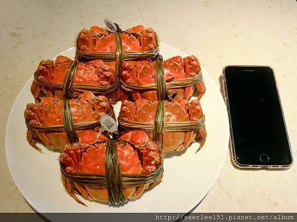 P1)今年成為我們腹中美餐的靚蟹.jpg
