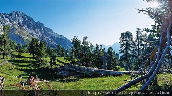 P4)照片取自瑞士旅遊局官網.JPG