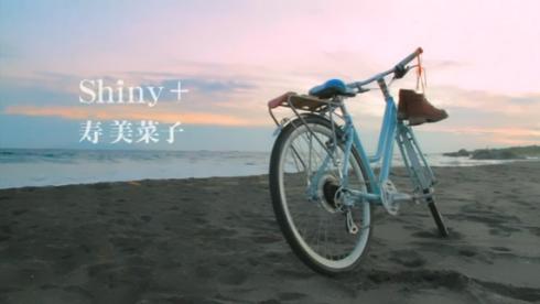 Shiny+.jpg