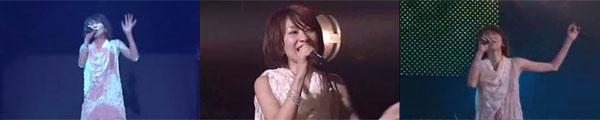 Animelo 2007片段
