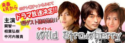 日劇『Wild Strawberry』
