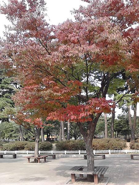 Photo111006_006.jpg