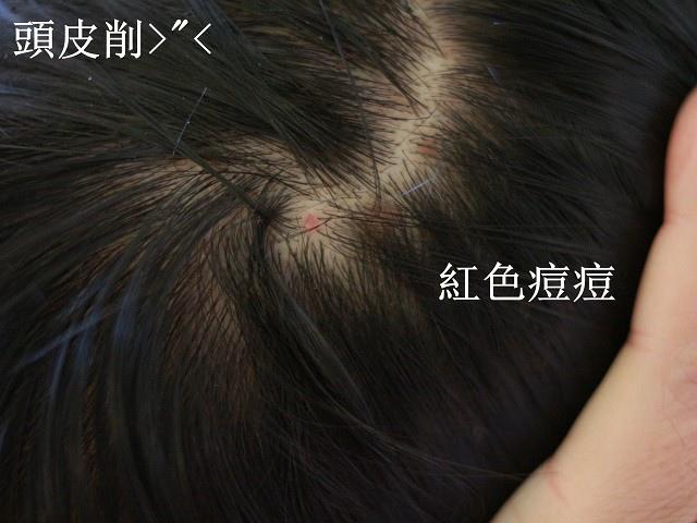 IMG_4663_副本2(001).jpg