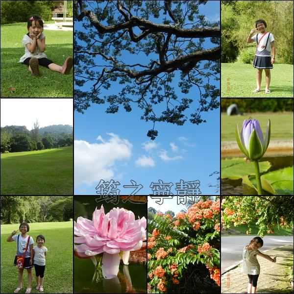 植物公園.jpg