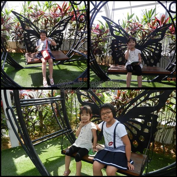 蝴蝶公園1.jpg