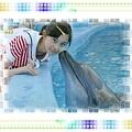 海洋公園~~~海豚親親~~~~.jpg
