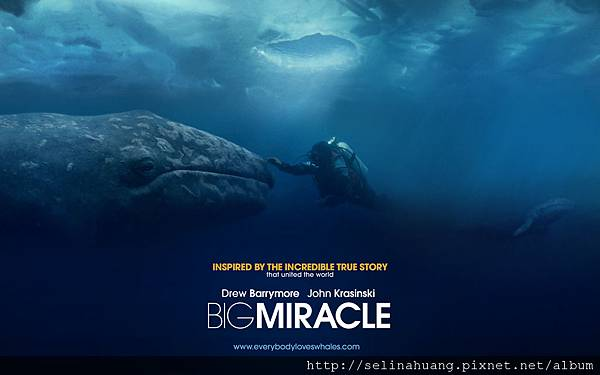 01bigmiracle_1920x1200