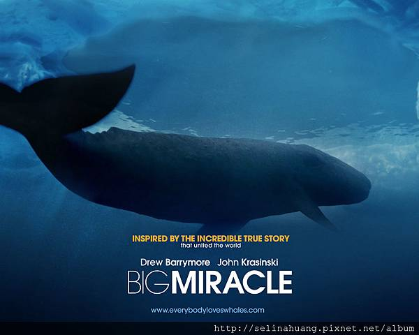 02bigmiracle_1280x1024