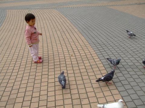 071129-微風廣場餵鴿子