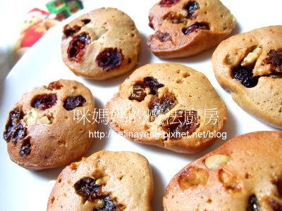 黃金葡萄蔓越莓餅乾-PP.jpg