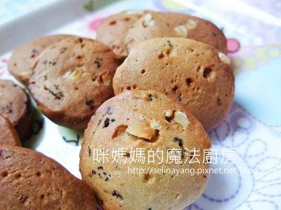 用紫蘇拌飯料做餅乾-PP.jpg
