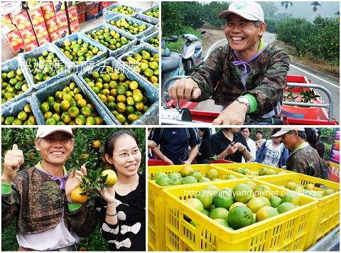 希望廣場農產水果參訪-P11.jpg