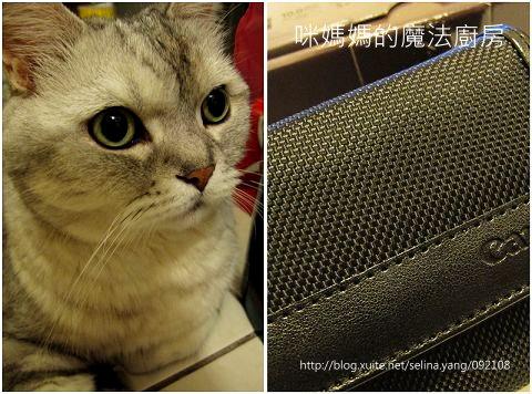 購入Canon G12-3