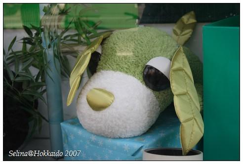 綠茶犬1.jpg