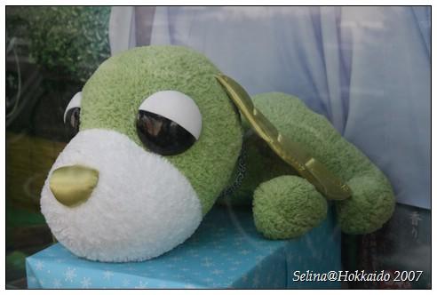 綠茶犬3.jpg