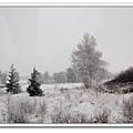 雪景3.jpg