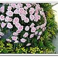 玫瑰花.jpg