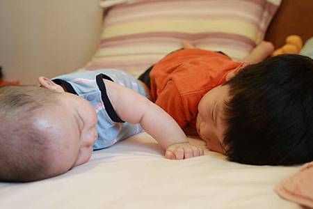 Brothers_20120424_1.jpg