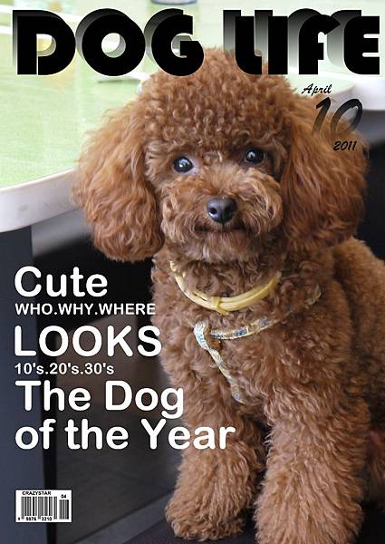 2011 04 20 DOG LIFE