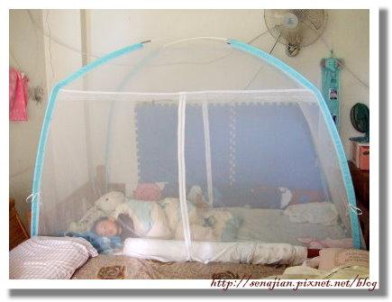 2008-11-11蚊帳.JPG