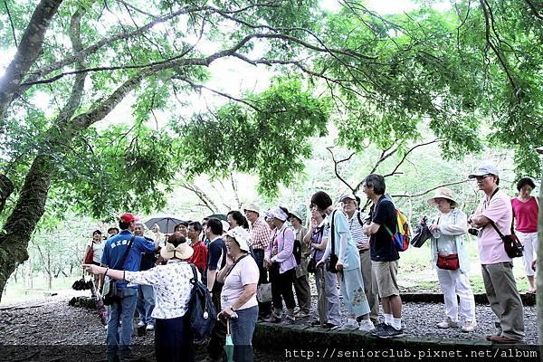 2011 福山植物園_11.JPG