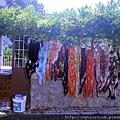 2011_土耳其-席林潔sirince blog (35).jpg