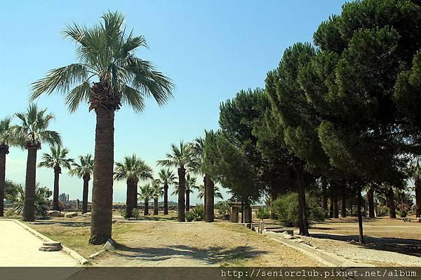 2011_土耳其-希艾拉波利斯遺址Hierapolis blog (12).jpg