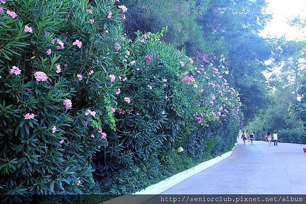 2011_土耳其-LETONIA HOTEL  blog (25).jpg
