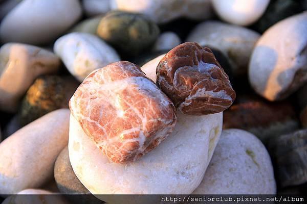 2011_土耳其-安塔利亞 Antalya Hotel blog (32).jpg