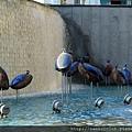 2011_土耳其-安塔利亞 Antalya blog (18).jpg