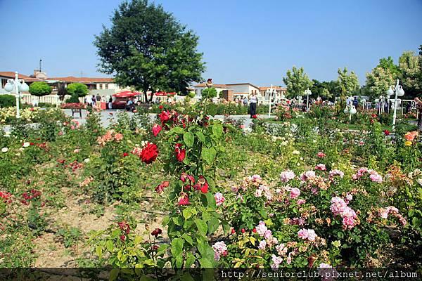 2011_土耳其-梅夫拉那Melvlana blog (04).jpg