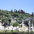 2011_土耳其 皮耶羅迪咖啡廳Pierre Loti blog  (9).JPG