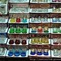 2011 土耳其市容 (10)_調整大小.jpg