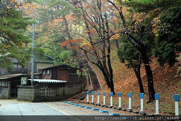 2011 Nov 6 千秋公園 (15)_調整大小.JPG