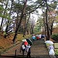 2011 Nov 6 千秋公園 (21)_調整大小.JPG