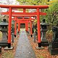 2011 Nov 6 千秋公園 (100)_調整大小.JPG