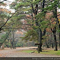 2011 Nov 6 千秋公園 (111)_調整大小.JPG
