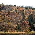 2011 Nov 7 最上川舟唄_55_調整大小.JPG