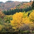 2011 Nov 8 風雅之國 (107)_調整大小.JPG