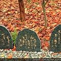 2011 Nov 8 風雅之國 (37)_調整大小.JPG